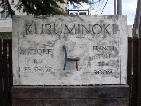 Kuruminoki1